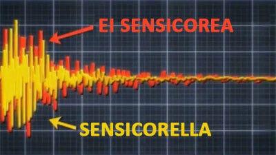 Sensicore tarkoittaa, että asennamme varteen tärinänvaimentimen